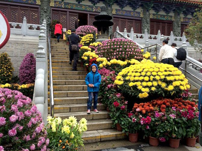 ngong ping 360 monastery flowers