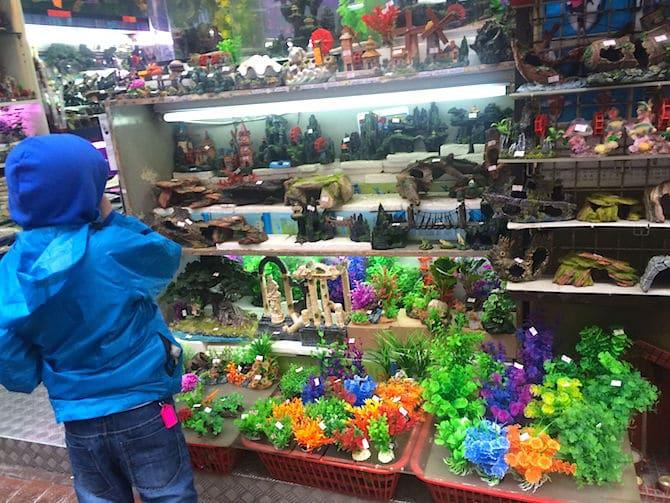 hong kong goldfish market artificial plants