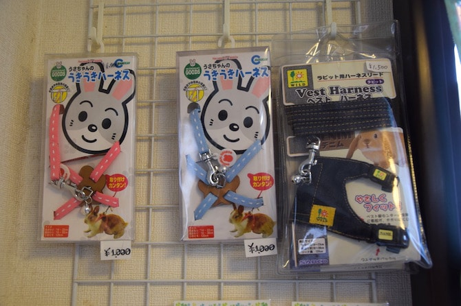harajuku rabbit cafe harness