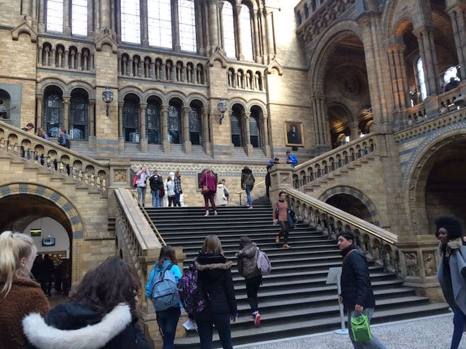 natural history museum london with kids architecture