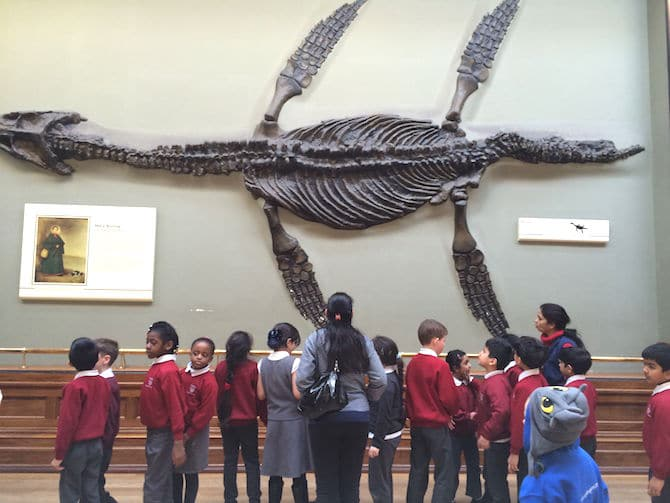 natural history museum london fossil with ned