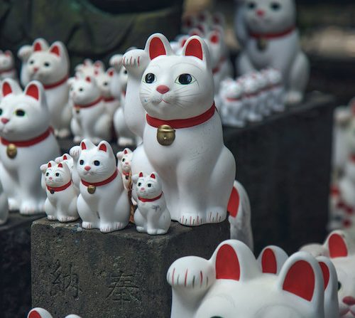 Temples in tokyo - cat temple tokyo close up