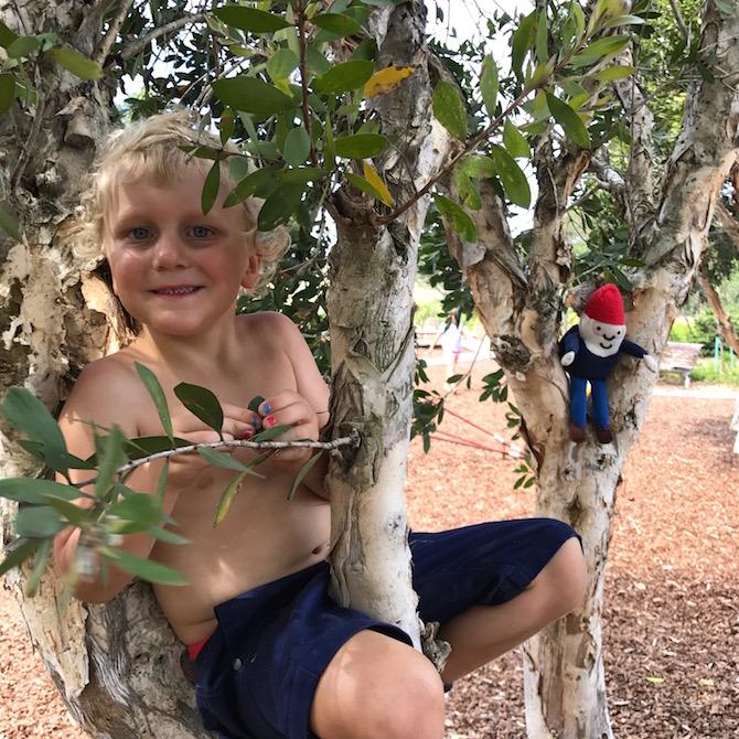 Sydney Park Playground St Peters pic