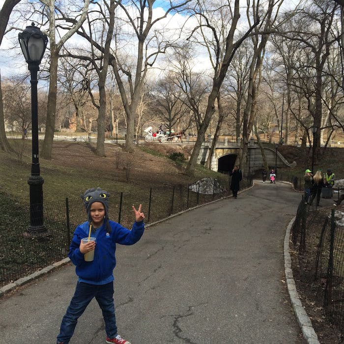 Visit ROAM THE GNOME Family Travel Website Directory for SUPER DOOPER FUN ideas for family vacations around the world. Search by city. Photo- Heckscher Playground Central Park