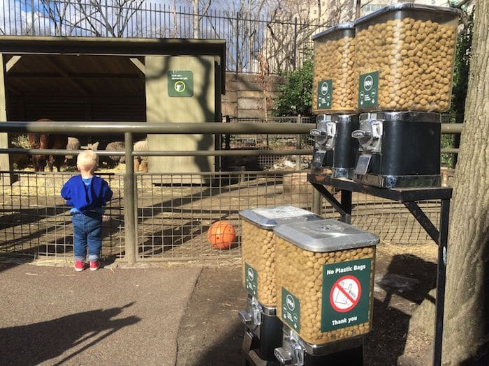 Best zoo in new york city - Central Park Zoo. ROAM THE GNOME Family Travel Website. Hundreds of fun ideas and activities to help you plan and book your next family vacation or weekend adventure.