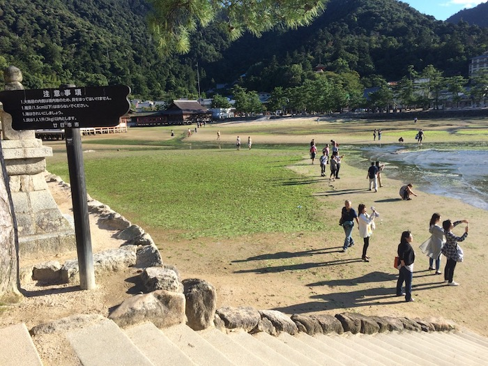 stairs to floating torii gates at miyajima island pic