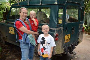 disney world travel blog