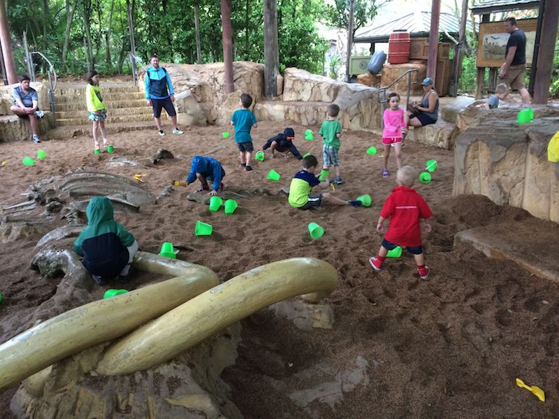 disney world playgrounds - boneyard sandpit 800