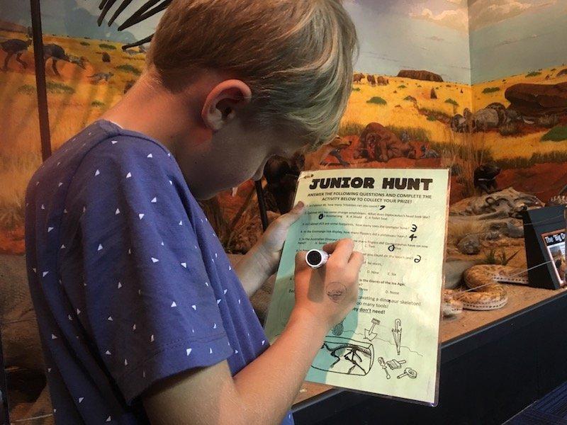 Dinosaur Museum Canberra dinosaur hunt pic