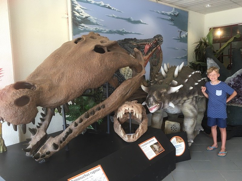 The National Dinosaur Museum in Canberra foyer pic