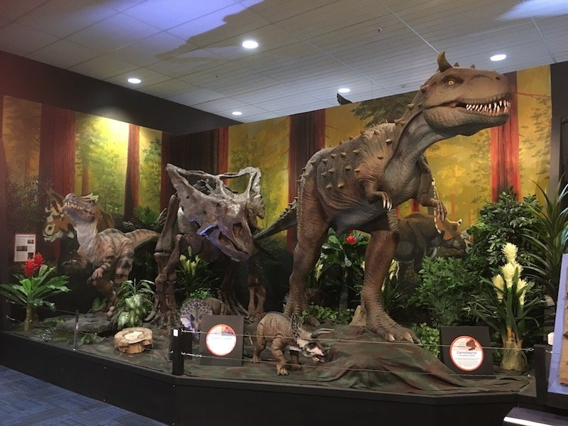 gallery of dinosaurs pic