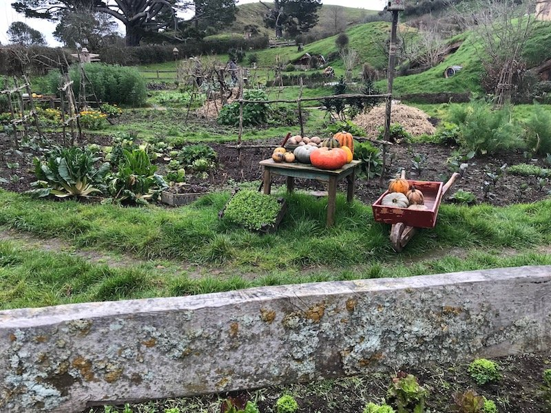 hobbiton movie set tours in new zealand props