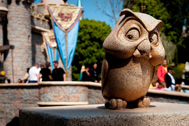 disneyland owl by josh hallett