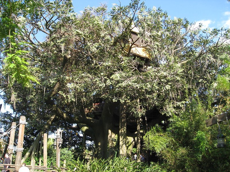swiss family robinson treehouse by patrick barry